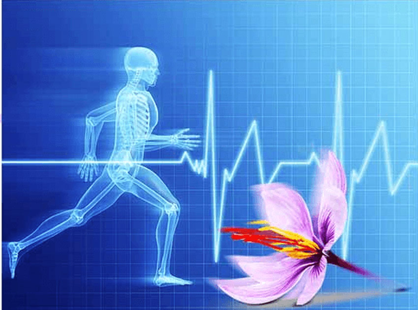 Tác dụng của Saffron Bahraman với sức khỏe